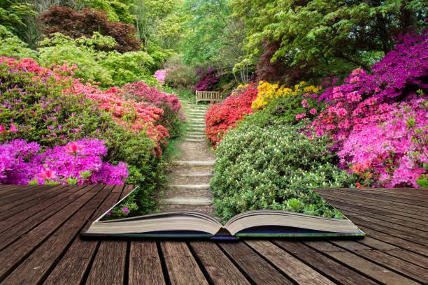 Aménager un jardin en pente
